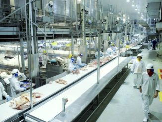 BRF Brazil 326x245 - Brazil meat producer BRF continues to invest